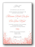 Wedding Invitation Testimonial