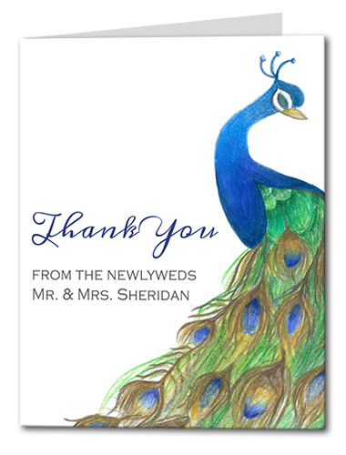Pretty Peacock Thank You Card