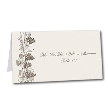 Vineyard Vines Table Card